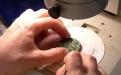 Limpeza de objecto de bronze à lupa binocular